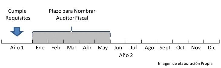 Plazo nombramiento auditor Fiscal